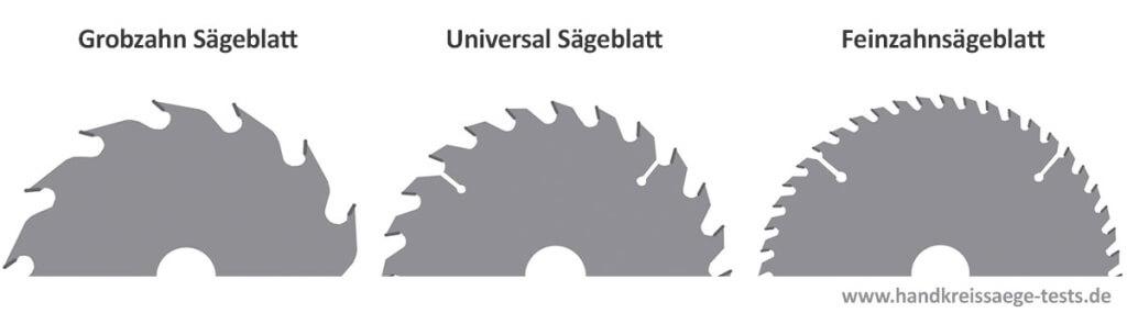 Sägeblatt-Arten